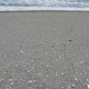 震災2年、行方不明者なお2,800人──【震災遺骨】砂浜に流れ着く命の欠片をめぐって