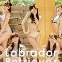 """「炎上商法!?」「決意表明!?」指原、峯岸、渡辺……AKB48新曲ジャケットが""""スキャンダル選抜""""だと話題"""