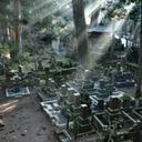 消える墓 ― 6年に1度は「墓参り=墓確認」に行っておいたほうがいい