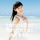 投票権転売ビジネスも興隆中 AKB48総選挙が中国の民主化実現の原動力に!?