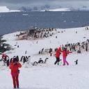 """""""恥さらし""""中国人観光客が南極に大挙上陸中! 条約無視の大暴れで、観測隊も大困惑……"""