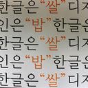 """""""お騒がせ""""韓国活動家のトンデモ調査 日本語由来のハングル使用禁止を訴える!?"""
