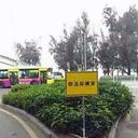 """「ブサイクなお前は、平気で道路を横切るね」斬新な標語効果で、""""中国式交通ルール""""に異変!?"""