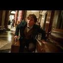 エディ・レッドメイン主演『ファンタスティック・ビーストと魔法使いの旅』、場面写真が公開に