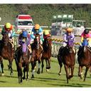 武豊の美技からサブちゃん涙の初優勝、そして日本馬が香港で大活躍……2015年競馬ベストレースを発表!
