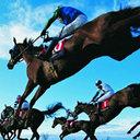 日本馬が世界と戦う今だからこそ押さえておきたい「世界トップ10」