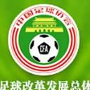 """中国サッカー、外国人帰化作戦決行?""""11人全員が外国人""""はあり得るのか?"""