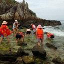 """タイの小島で勝手にサンゴを採取! 二極化する中韓観光客の""""マナー""""に、地元民もお手上げ?"""