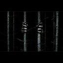 森の奥深くからのびる2本の腕の正体は!? A・ウィンガードによるスリラー映画『ザ・ウッズ』公開へ