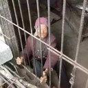 現代版「姨捨山」!? 息子夫婦が92歳の老婆を豚小屋で飼育