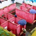 脱・ニーハオトイレ目指すも……中国「トイレ革命」は前途多難