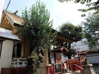 参拝すればチケットが当選する? 皆中稲荷神社で聞いた、本当の御利益の意味の画像4