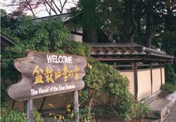 20080229_bonsai2.jpg