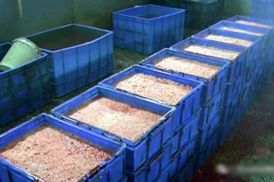 「価格は正規品の20分の1」中国で流通する激安加工食品の正体は……の画像2