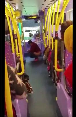 新手の自爆テロ!? 香港のバス車内で中年女性が「脱糞」!の画像1