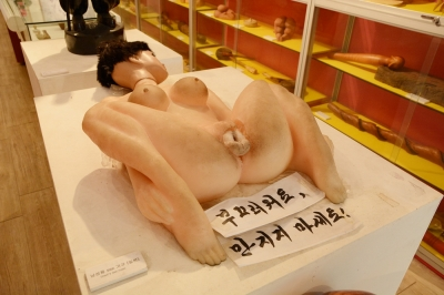 日本初公開? 韓国の宮崎駿が笑顔で出迎える「江華セックスミュージアム」の画像6