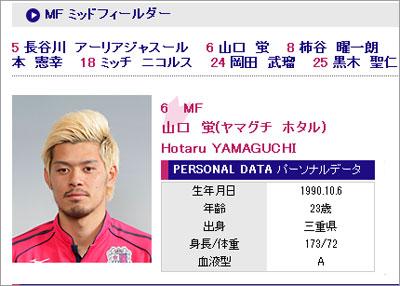 hotaruyamaguchi.jpg