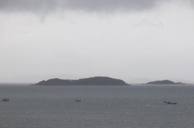 南北の緊張高まる中、中国船がワタリガニ密漁で丸儲け!「獲れるものはなんでも獲っていく」の画像1