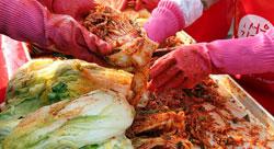 kimchi0910