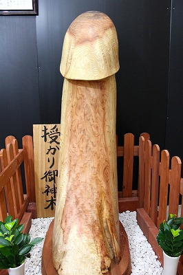 kinugawa03.jpg