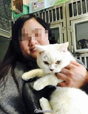 ペットショップへの腹いせ!? 返品拒否された女が、飼い猫の皮を剥いで遺棄!の画像1