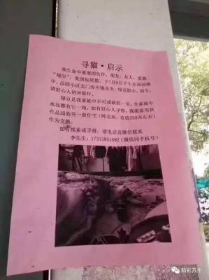 ペット捜索に懸賞金5,000万円超! 中国で新たな誘拐ビジネスが誕生間近!?の画像2