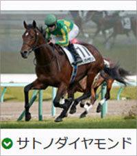 satonodaiyamond0215b.jpg
