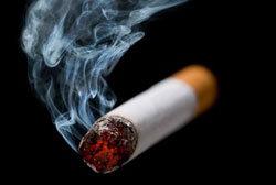tabaco0804.jpg