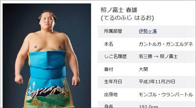 terufuji1102