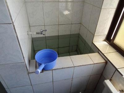 toilet1113.jpg